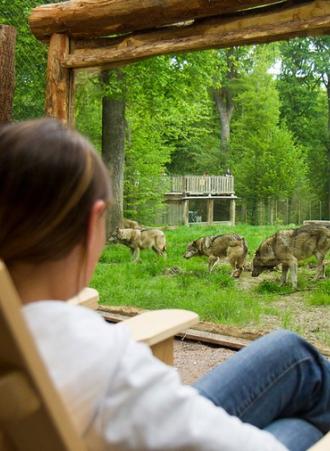 dormir avec les loups au parc de sainte croix. Black Bedroom Furniture Sets. Home Design Ideas